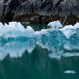 Josh Whalen - Tracy Arm Fjord Ice Two