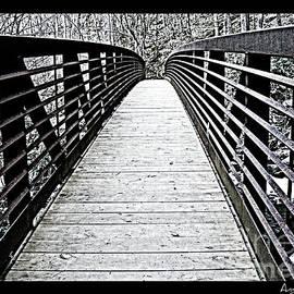 Angela Dalporto - Troll Bridge