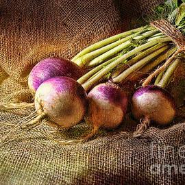 Sari Sauls - Turnips