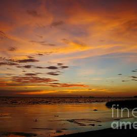 Joan McCool - Twilight Colors