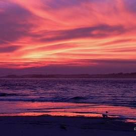 Al Powell Photography USA - Tybee Island Sunset