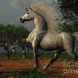 Corey Ford - Unicorn Forest