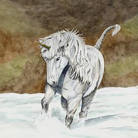 Shari Nees - Unicorn Icelandic