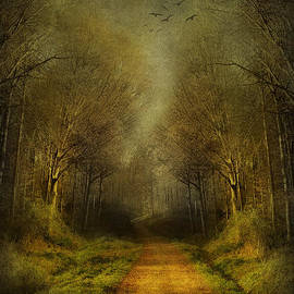 Svetlana Sewell - Unknown Footpath