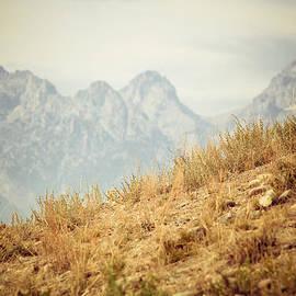 Betsy Barron - Uphill Climb