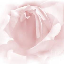 Jennie Marie Schell - Upon a Cloud Pink Rose Flower