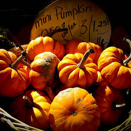 Chantal PhotoPix - Vignette Photo of Small Pumpkins in a Wicker Basket at the Market - Fall Harvest in Autumn Colors