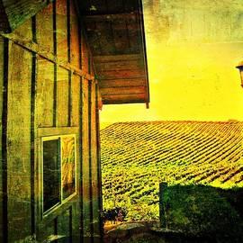 Kevin Moore - Vineyard Reflection