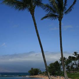 Sharon Mau - Wailea Beach Maui Hawaii
