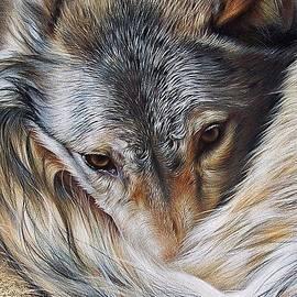 Elena Kolotusha - Watchful Rest -close-up detail
