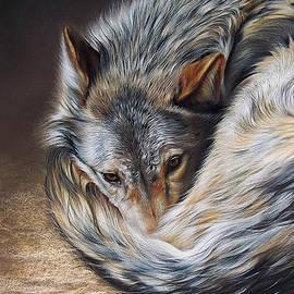 Elena Kolotusha - Watchful Rest