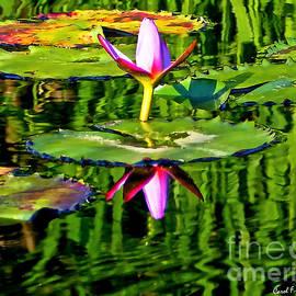 Carol F Austin - Water Lily Pond Garden Impressionistic Monet Style