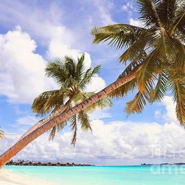 Jenny Rainbow - Whispering Palms. Maldives