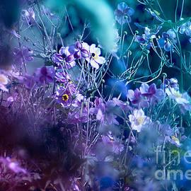 Viaina     - Wildflowers