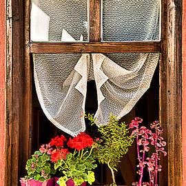 Okan YILMAZ - Window