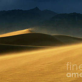 Bob Christopher - Death Valley Windswept Dunes