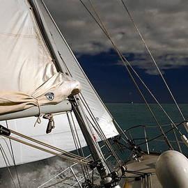Sally Weigand - Windy Day