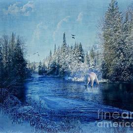 Lianne Schneider - Winter Paradise