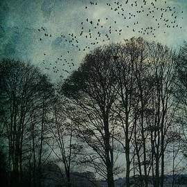 Ann Garrett - Winter Trees