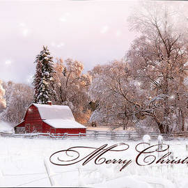 Reflective Moment Photography And Digital Art Images - Winters Glow - Christmas Card