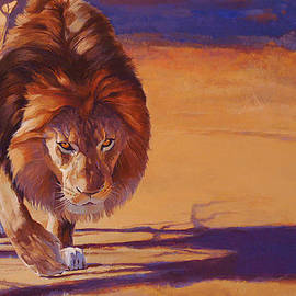 Shawn Shea - Within Striking Distance - African Lion