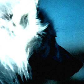 Colette V Hera  Guggenheim  - Wolf Friend