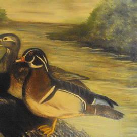 Virginia Butler - Wood Ducks