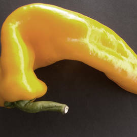 David Wenman - Yellow Pepper