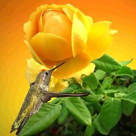 Joyce Dickens - Yellow Rose and Hummingbird 3