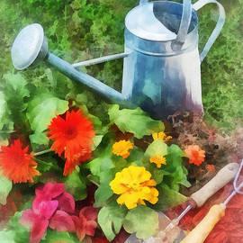 Susan Savad - Zinnias and Watering Can