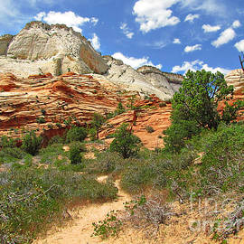 Christine Till - Zion National Park - A Picturesque Wonderland