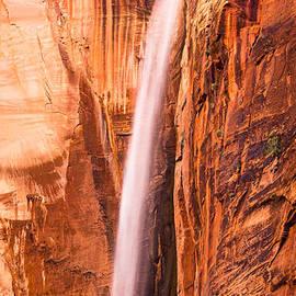 Adam Pender - Zion Waterfall