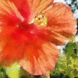 Jeff Kolker - Zoo Flower