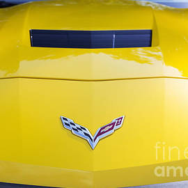 2015 Corvette Stingray Hood - Tim Gainey