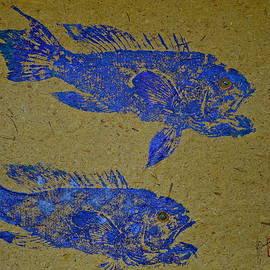 Black Sea Bass - Rockfish