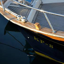 Damijana Cermelj -  Boat