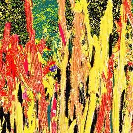Ian  MacDonald -  Bridgestone Cacti