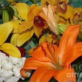 Dora Sofia Caputo Photographic Art and Design -  Day Lilies and Spring Blossoms