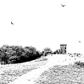 Linsey Williams -  High Key At Bradgate Park In Leicestershire