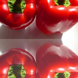 Tina M Wenger -  Mirrored Red