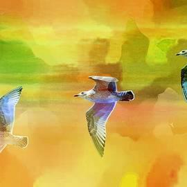 Jean Francois Gil -  The Seagulls 1