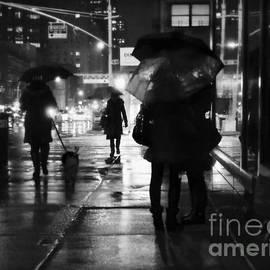 Miriam Danar -  The Softness of Rain