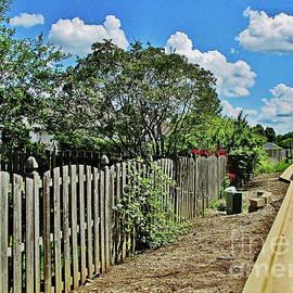 Don Baker -  Wooden Fence Blue Sky