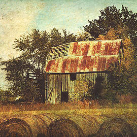Anna Louise - Abandoned Countryside Barn and Hay Rolls