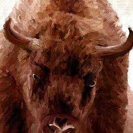James Shepherd - American Bison