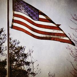 A R Williams - American Flag
