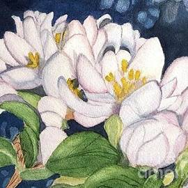 Sue Carmony - Apple Blossoms