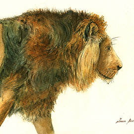 Asiatic lion - Juan Bosco
