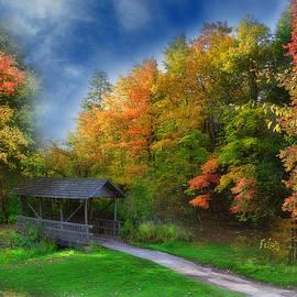Reese Lewis - Autumn Bridge