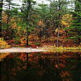 Debbie Oppermann - Autumn Colors